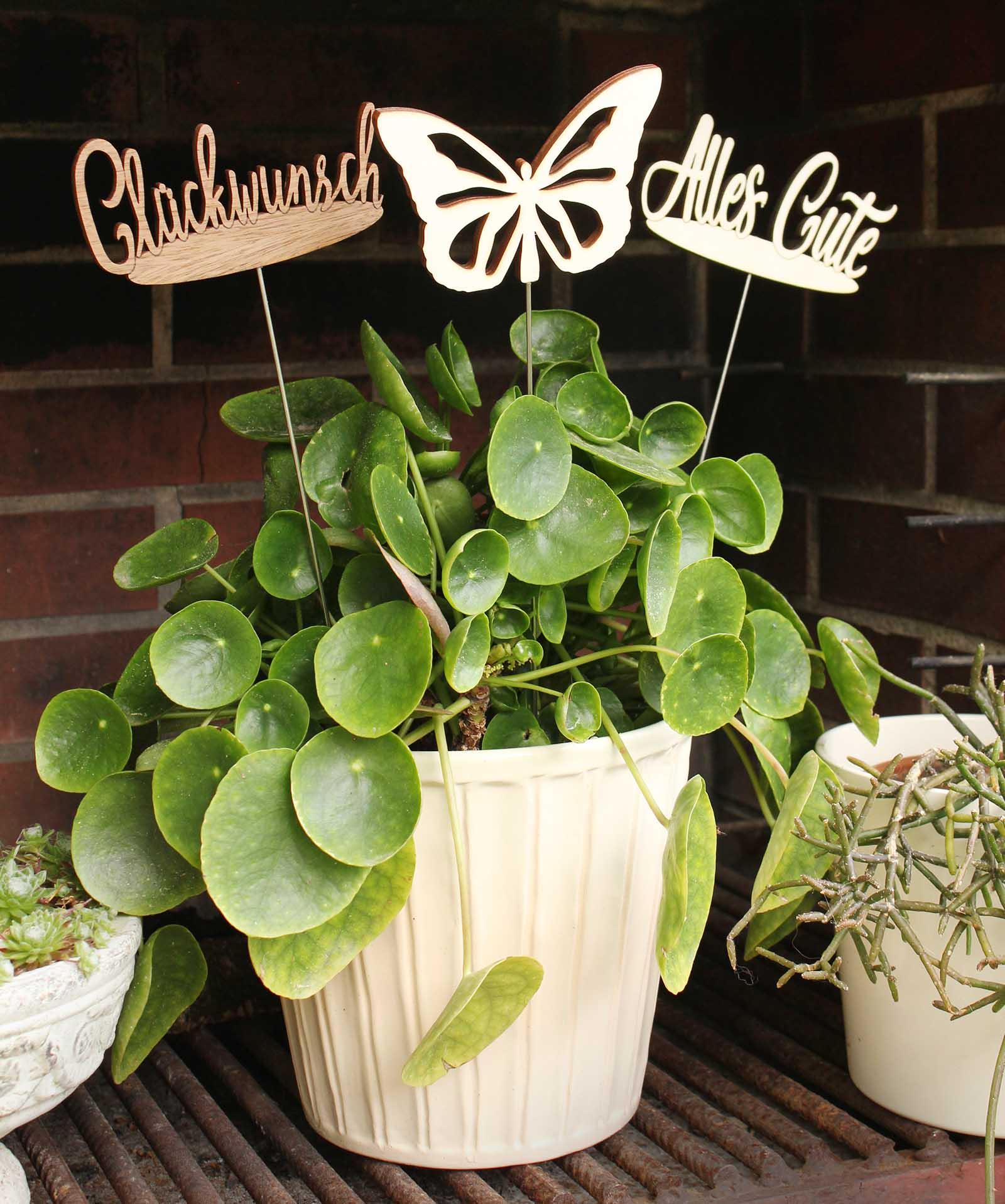 Pflanzenstecker Viel Glück
