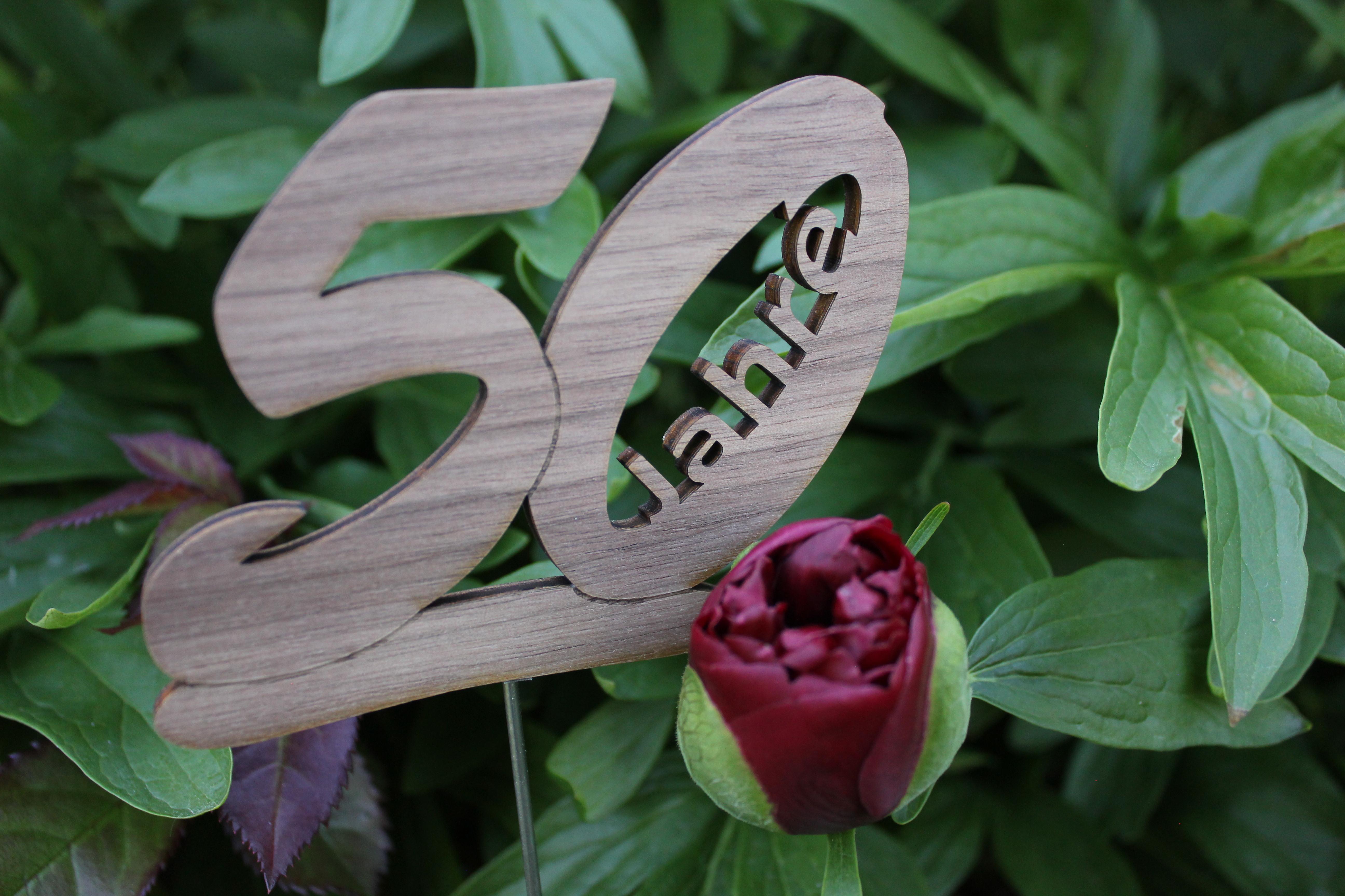 Pflanzenstecker 25. Geburtstag